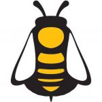MSBA bee